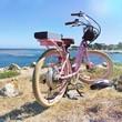 vintage pink bike on pacific coastal trail