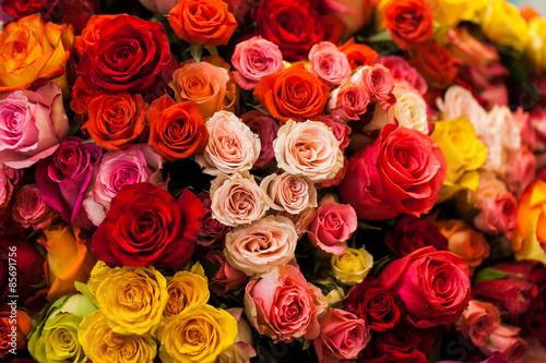 fototapeta na ścianę Piękny bukiet z róż wielokolorowe