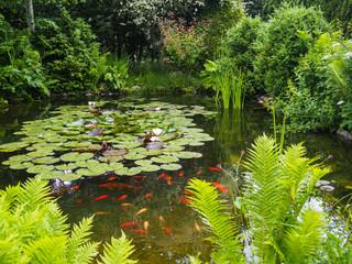 NaklejkaIdyllischer Gartenteich mit Fischen