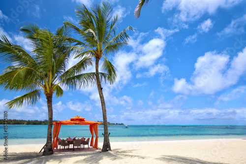 fototapeta na ścianę Lunch time on tropical sandy beach in Mauritius Island