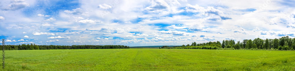 Fototapety, obrazy: summer  landscape a panorama with a field ,  agriculture