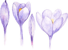 Set Of Four Watercolor Spring ...