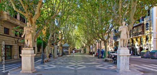 Passeig Borne - Palma de Mallorca Fototapet