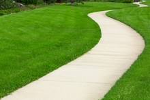 Pathway Through Green Lawn