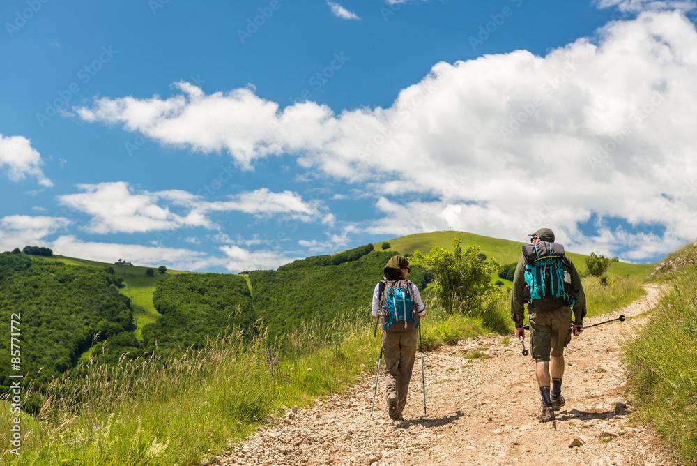 Fototapety, obrazy: Escursione M.te Guaidone, trekking di montagna nella bellezza del Pian Grande a Castelluccio di Norcia