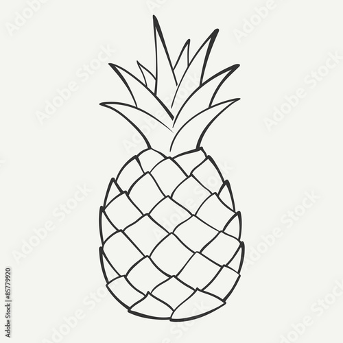 Outline black and white image of a pineapple. Vector Graphics. Wallpaper Mural