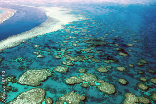 In de dag Australië Aerial View Great Barrier Reef Australia-4