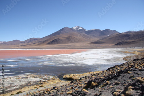 Staande foto Vulkaan Mountain landscape with Laguna Colorada in Bolivia, South America