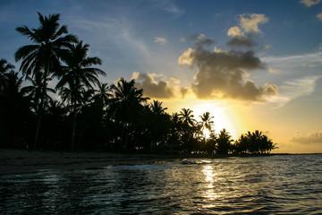 Fototapeta na wymiar Silhouette einer Palmeninsel im Sonnenuntergang