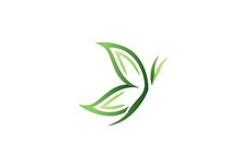 Butterfly Logo, Fashion, Spa, Green Leaf Butterfly Concept, Creative Vector Design Insect Symbol Icon
