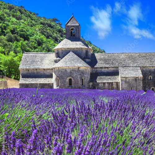 Abbey de Senanque with blooming lavander field,Provence, France - 85841709