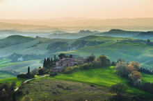 Tuscan Cypress Trees In The Spring Landscape Painted By Light