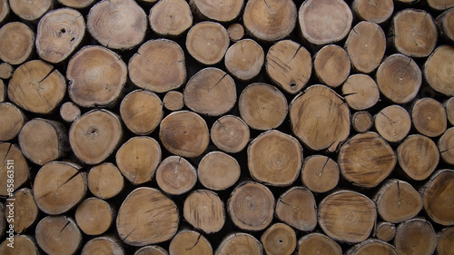 Tuinposter Hout background of wood logs