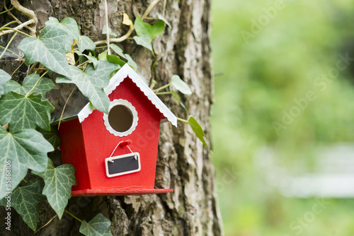 Foto Vogelhäuschen im Garten