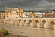 View of historic Cordoba, Mezquita, and Roman bridge, Spain