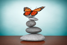 Old Style Photo. Balanced Stones With Butterfly