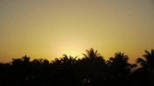 Time Lapse Footage Of Sunrise Coming Up From Tropical Beach And Palm Tree In Mexican Caribbean