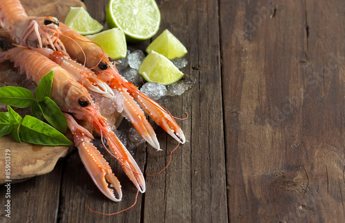 Poster Schaaldieren Raw langoustine on ice with lime and basil