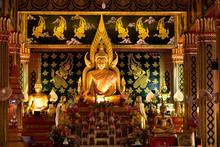 Faith Gaze  The Buddha In The Temple