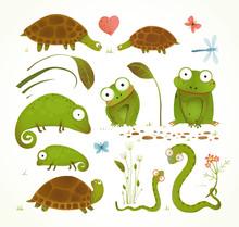 Cartoon Green Reptile Animals ...