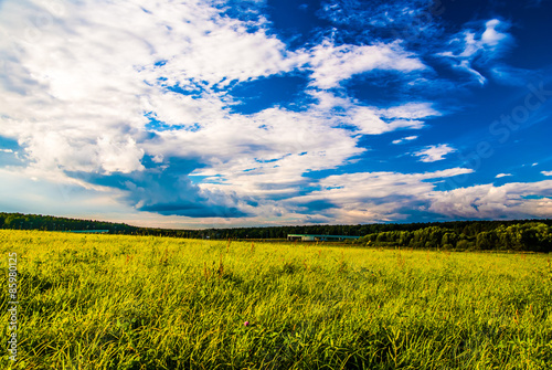 Fotografie, Obraz  grass field and dramatic sky at sunset