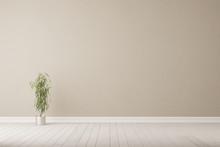 Oleander Vor Wand Auf Boden