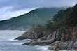 Mystical Sea coast after the typhoon.