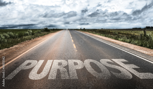Purpose written on rural road Canvas Print