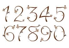 Brown Floral Numbers