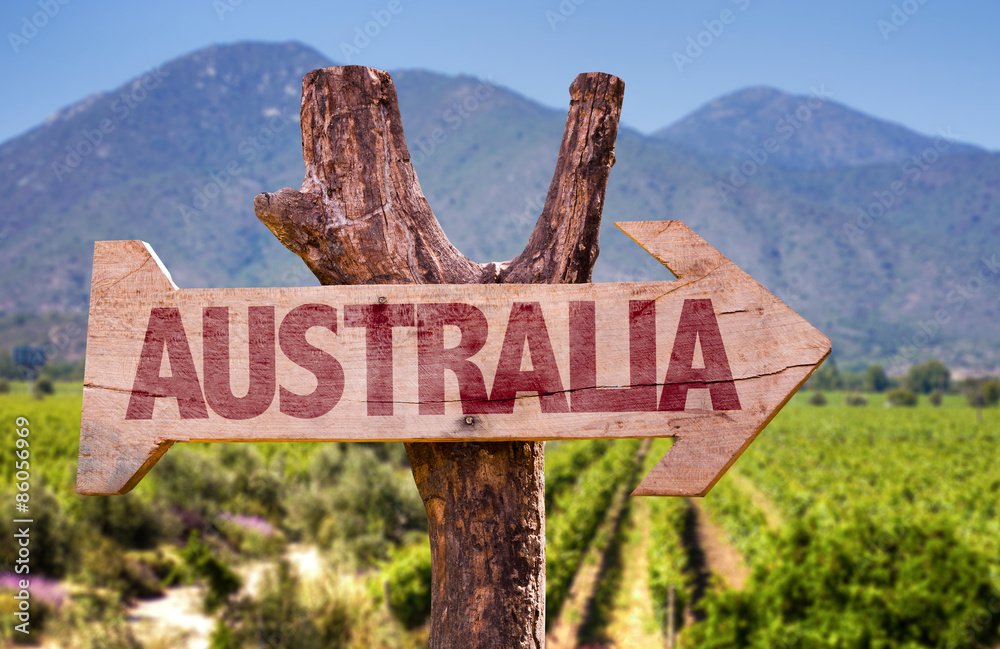 Fototapeta Australia wooden sign with winery background