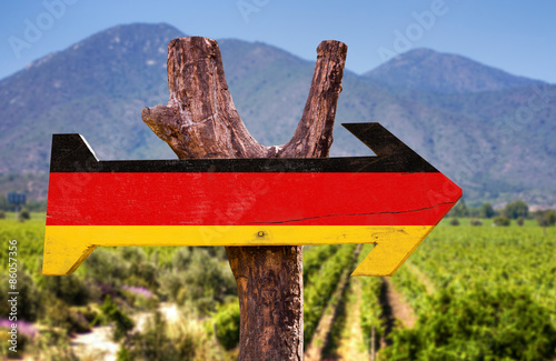 Poster Afrique du Sud Germany Flag wooden sign with winery background