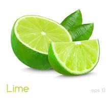 Lime Slice Illustration Isolated On White Background