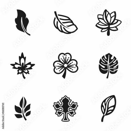 Fototapety, obrazy: Vector Leaf icon set