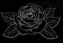 Beautiful White Rose Outline With Gray Spots On A Black Background