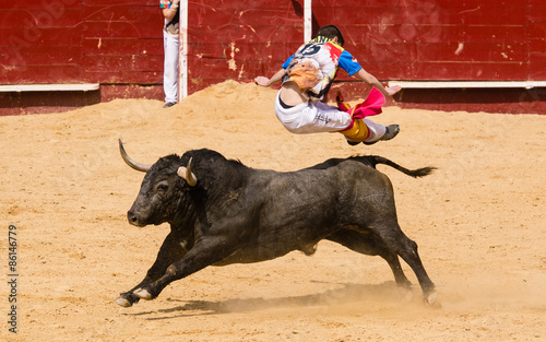 Cadres-photo bureau Corrida Competición de recortes con toros bravos. En esta competición se usa el propio cuerpo para torear