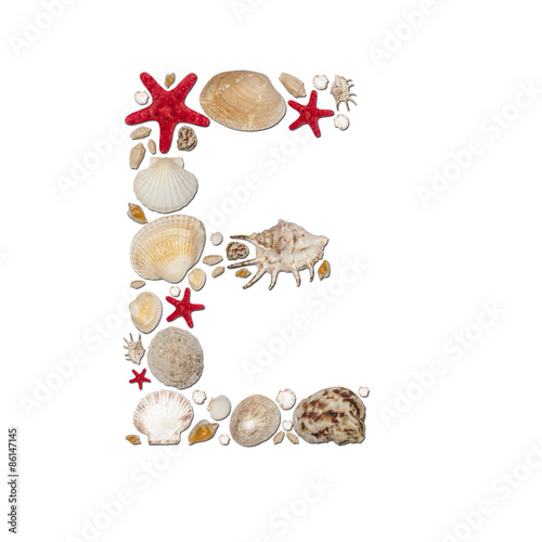 E - letter arranged from sea shells and starfishes