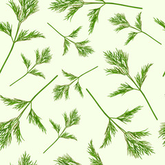 FototapetaSeamless pattern with dill