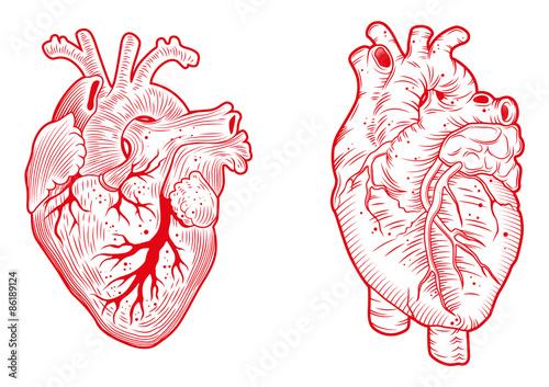 Obraz na plátně hearts