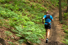 Man Running And Training On The Single Trail In The Forest