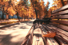 Park Bench Autumn Urban Landsc...