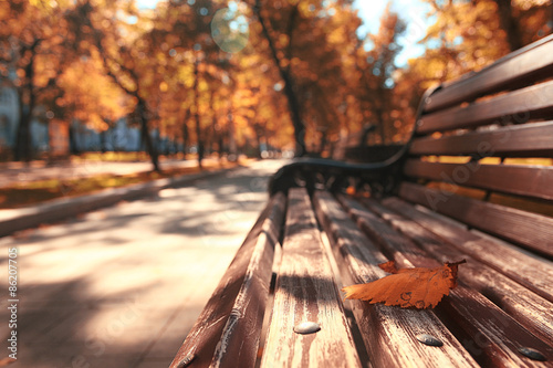 Obraz Park bench autumn urban landscape recreation - fototapety do salonu