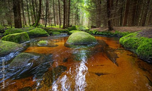 brook in forest , Sumava, Czech republic, Europe Tapéta, Fotótapéta