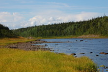 Landscape Of The Varzuga River. River Spawning Salmonids In The Arctic.