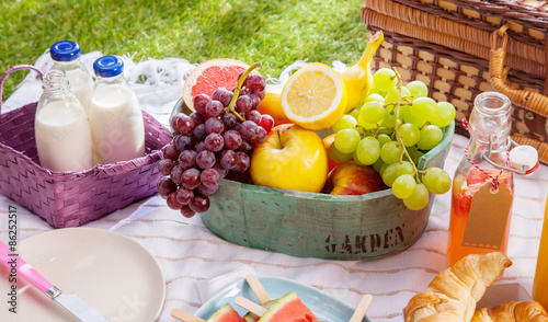 Aluminium Prints Picnic Bottles of fresh milk, juice and fruit at a picnic