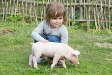 Piglet In Girls Hands Smiling