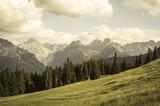 Krajobraz gór rocznika - 86322796