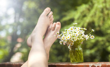 Camomile Flowers And Feet