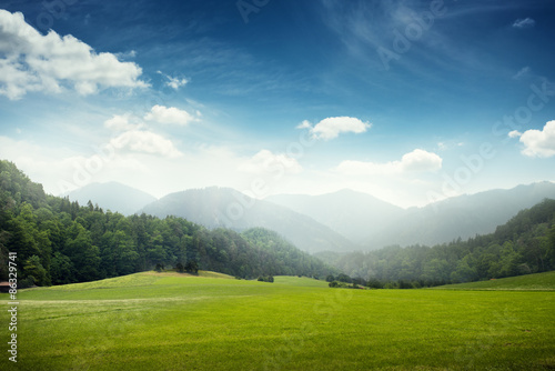 Photo Stands Blue jeans green meadow and hills with forest