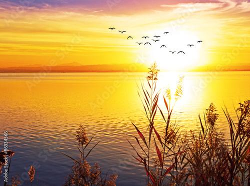 Fototapety, obrazy: puesta de sol en el lago