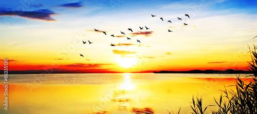 Poster Melon amanecer panoramico en el lago
